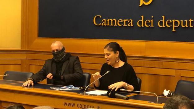 capitano ultimo, regione calabria, Jole Santelli, Calabria, Politica