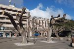 Alberi potati in via Cairoli a Messina, scoppia la polemica fra agronomi