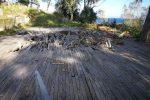 Messina, forte Ogliastri nel degrado invaso dai cinghiali: sopralluogo per salvarlo dall'incuria - Foto