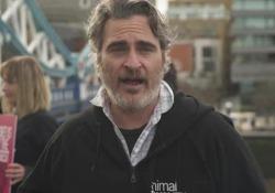 Joaquin Phoenix protesta a Londra contro gli allevamenti intensivi L'attore si è unito all'organizzazione Animal Equality - Corriere Tv
