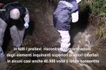 Arsenico nel fiume, sequestrato il depuratore di Bisignano: indagati i manager della Consuleco