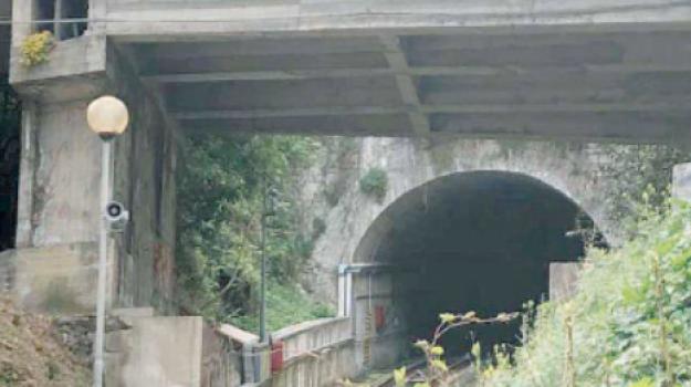 lesione, ponte, Catanzaro, Calabria, Politica