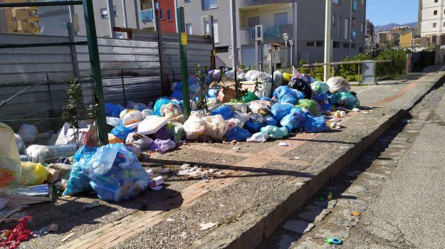 raccolta, rifiuti, stipendi, Crescenzo Pellegrino, Cosenza, Calabria, Economia