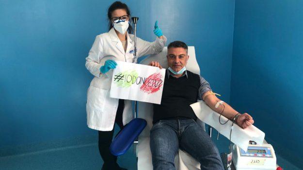 avis, donazione sangue, Demetrio Battaglia, Catanzaro, Calabria, Cronaca