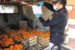 Montalto Uffugo, in giro a vendere agrumi nonostante le restrizioni: due denunce
