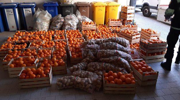 controlli reggio, sequestro frutta, Reggio, Calabria, Cronaca
