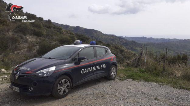 Reggio, Calabria, Cronaca