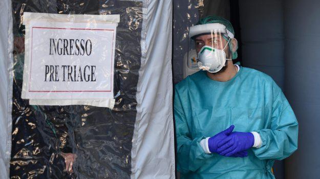 coronavirus, Giuseppe Conte, Wanda Ferro, Calabria, Politica
