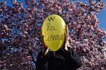 Festa della donna, perché si celebra l'8 marzo: storia e significato