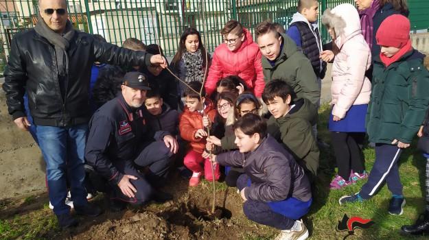 Catanzaro, i carabinieri forestali donano 120 piante e migliaia di semi alle scuole