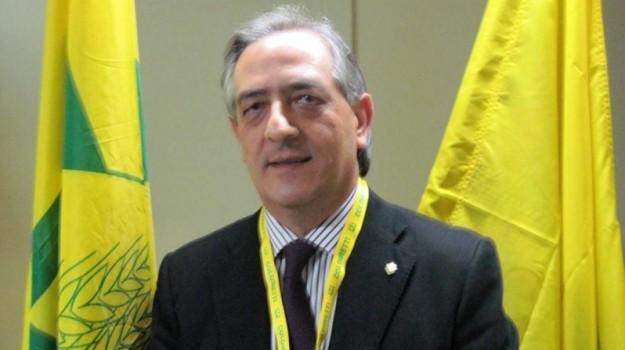 coronavirus, pippo callipo, Calabria, Politica