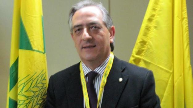 dissesto idrogeologico, Pietro Molinaro, Cosenza, Politica