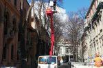Potature e messa in sicurezza delle alberature a Messina, divieti di sosta e limitazioni: ecco dove