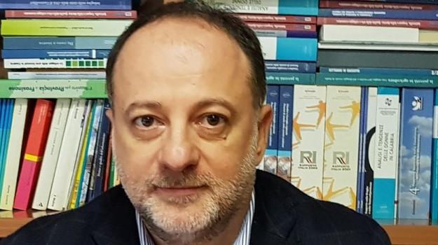 Jole Santelli, Raffaele Rio, Calabria, Politica
