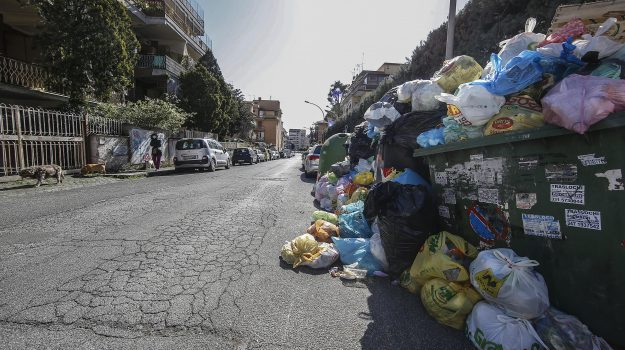 arpacal, coronavirus, rifiuti calabria, Calabria, Economia