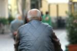 Trasporti sostenibili, Crotone e Catania ultime in Italia: Trento in cima alla classifica