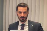 """Calabria, Sofo: """"Presentata interrogazione a difesa produttori nocciole"""""""