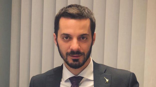 Vincenzo Sofo, Calabria, Economia