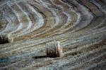 Con rese terre più alte taglio del 40% del consumo del suolo