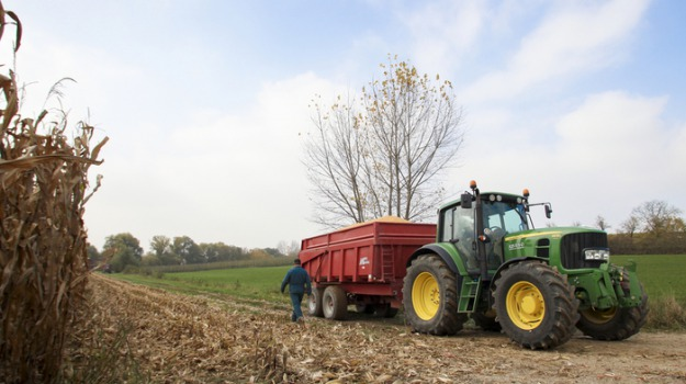agricoltura, consorzi di bonifica, Calabria, Economia