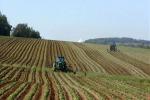 La Regione Calabria rilancia l'agricoltura bio, nuovo bando del Psr da 60 milioni