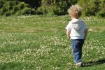 Coronavirus, l'udienza non si può fare: bimbo di 2 anni adottato tramite app Zoom