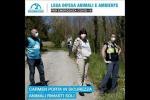 «Dalla parte degli animali, anche durante l'emergenza coronavirus»
