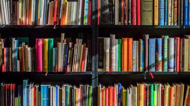 istruzione, libri, scuola, Catanzaro, Calabria, Cronaca