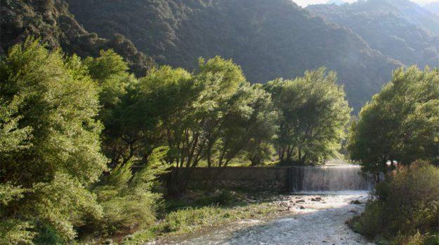 parco aspromonte, turismo, Rocco Gangemi, Reggio, Calabria, Cultura