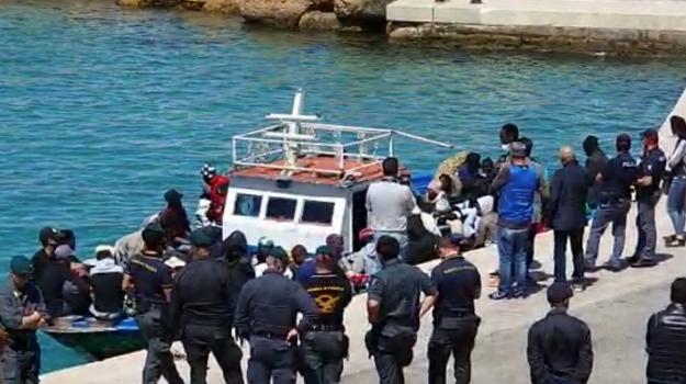 lampedusa, migranti, Nello Musumeci, Totò Martello, Sicilia, Cronaca