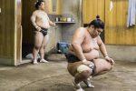 Coronavirus in Giappone, muore lottatore di sumo 28enne