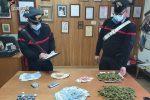 Marijuana nascosta in casa, un arresto e una denuncia a San Giovanni in Fiore