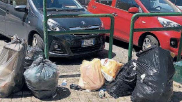 fase 2, rifiuti, Catanzaro, Calabria, Cronaca