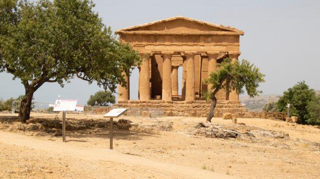 valle dei templi, Sicilia, Cultura