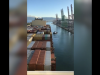 La nave Msc Sixin arriva a Gioia Tauro, l'ingresso al molo dell'imbarcazione da record