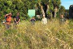Volontari in campo, nasce a Lipari l'orto solidale