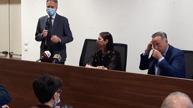 boschi, incendi, regione, Gianluca Gallo, Jole Santelli, Salvatore Siviglia, Calabria, Politica