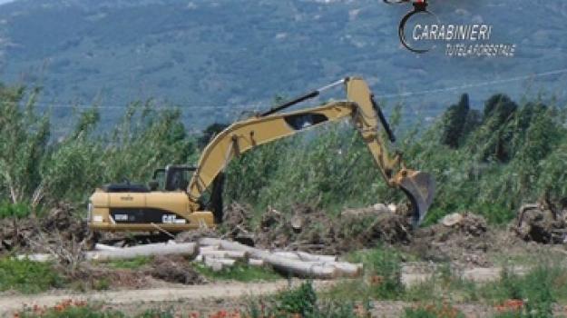 lavori, pioppeto, tutela paesaggistica, Catanzaro, Calabria, Cronaca