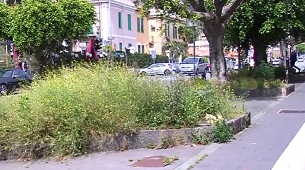 messina, scerbatura, scuole, Messina, Cronaca