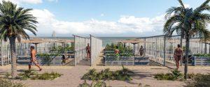 Prenotazione, cinque metri fra gli ombrelloni e niente giochi al mare: le regole per andare in spiaggia