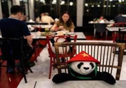 Thailandia: peluche di panda nel ristorante per far compagnia ai clienti La simpatica idea di un locale per non lasciare soli i propri clienti ma anche per segnalare la giusta distanza da tenere - CorriereTV