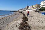 Giornate ecologiche in spiaggia e in villa a Torre Melissa e Strongoli