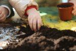 Coldiretti Sicilia, riaprono le fattorie didattiche per i bimbi
