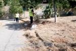 Messina Servizi si occuperà delle aree verdi, in arrivo 200 assunzioni