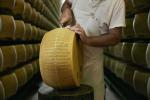Al via nuovo progetto editoriale del Consorzio Parmigiano Reggiano