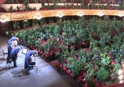 Barcellona, il concerto del teatro dell'opera davanti a migliaia di piante L'iniziativa dell'artista spagnolo Eugenio Ampudia - Ansa
