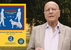 Coronavirus e distanze, i Lions: «Aiutiamo i non vedenti, i cani da soli non bastano» L'appello del presidente Fossati: «Aiutiamoli a vivere in sicurezza questa fase in cui tutto riparte> - Corriere Tv