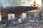 Catanzaro, incendio distrugge una tettoia in legno a Campagnella