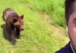 L'orso insegue l'uomo col gelato Il simpatico video ripreso in un parco nei pressi di Mosca - CorriereTV