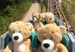 Olanda: su queste montagne russe ci sono solo orsetti di peluche Il simpatico video dal parco tematico Walibi Holland - CorriereTV
